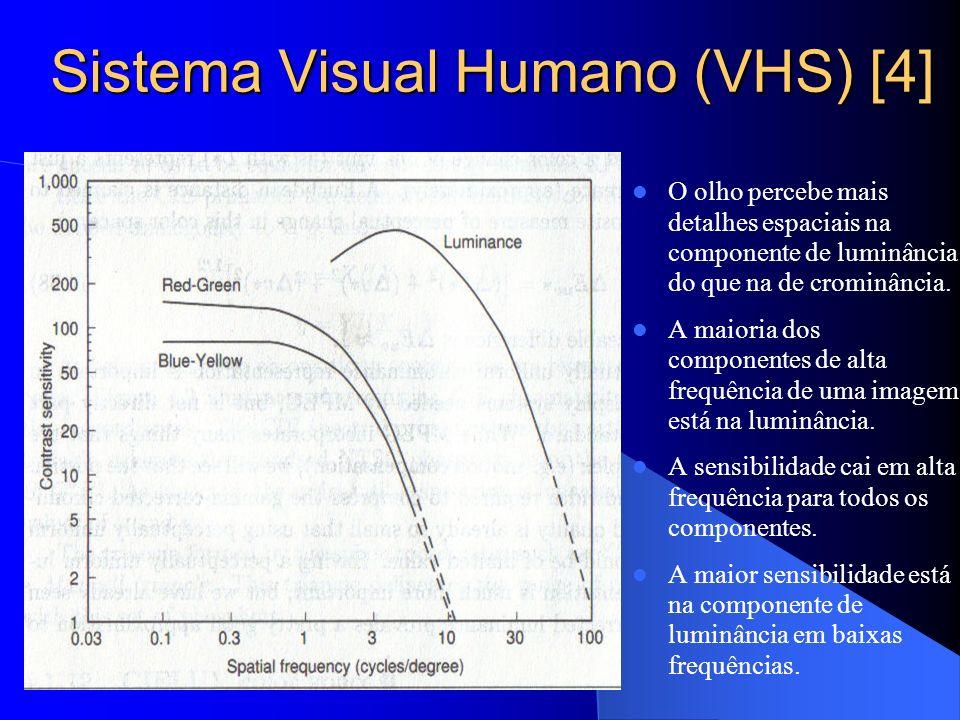Sistema Visual Humano (VHS) [4]